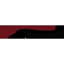 Endoscopy-Campaign logo - HLF Images